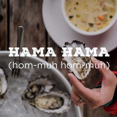Hankering for an oyster on a half shell? #hamahama #oyster #wildsideWA @hamahamaoysters #chowder #olympicpeninsula #pacNW #explorehoodcanal #yummy #instagood #love #cool #travel #nature #photooftheday #art #amazing #beautiful