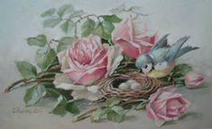 Spring Nesting`s