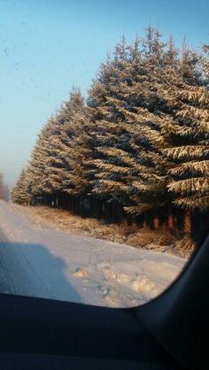 Talvipäivä -28. Tammikuu