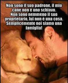 I Love Dogs, Cute Dogs, Dog Phrases, Animals And Pets, Cute Animals, My Only Love, Best Bud, Bichon Frise, Dog Quotes