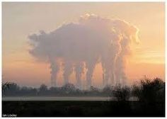 Image result for the 6 legged pig cloud