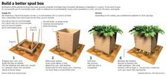 Would you like to Grow Potatoes but don't have much room for a garden? Try a Potato box. The art of growing potatoes in containers/box is a surprisingly simple one to learn! And can yield lots of potatoes for the space used. Potato Gardening, Gardening Tips, Urban Gardening, Hydroponic Gardening, Vegetable Gardening, Organic Gardening, Potato Box, Palmiers, Workshop