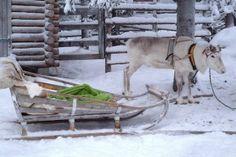 Le city Hôtel est situé au centre de Rovaniemi, le village du Père Noël. Vous apprécierez la décoration raffinée de cet hôtel chaleureux ainsi que ses formules « Tout compris ». Extension possible à l'Arctic SnowHotel.