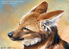 Maned Wolf Portrait by Nambroth.deviantart.com on @deviantART
