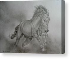 Canvas Print, sketch, drawing,  horse,wildlife,animal,equine,equestrian,portrait,pose,study,sketch,drawing,pencil,graphite,western,tail,mane,mustang,stallion,mare,foal,running,fierce,jumping,galloping,leaping,leap,strong,powerful,energy,motion,movement,dynamic,strong,action,free,black,white,gray,smoke,smokey,color,shades,realism,in,at,by,of,the,and,for,fine,art,for,home,hotel,office,interior,decor,popular,best,products,items,for sale, online,fine art america
