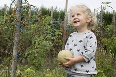 Little girl with cantaloupe in garden -