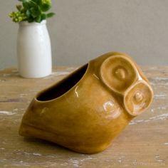'Little owl' ceramic pot by dawn