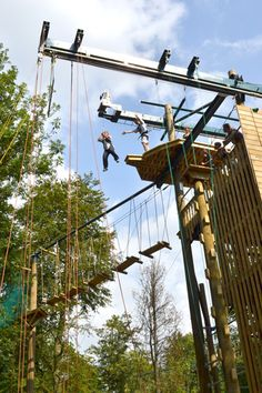 The UK's most exciting treetop adventure, high ropes and team building courses right here in Guildford, Surrey with all kinds of obstacles, Zip Wires and a freefall descender. Team Building, Surrey, Utility Pole, Drop, Adventure, Saree, Adventure Nursery