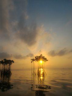Pantara Sunrise 4