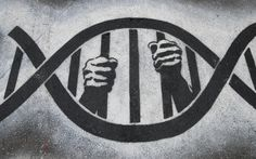 My DNA Made Me Do It? How Behavioral Genetics Is Influencing the Justice System - interesting read maybe could use in class Ap Biology, Teaching Biology, Criminal Justice System, Forensic Science, Cold Case, Dna Test, Forensics, Science Classroom, Socialism