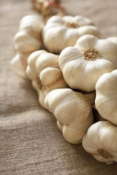 White garlic from Lomagne and pasta with garlic butter sauce