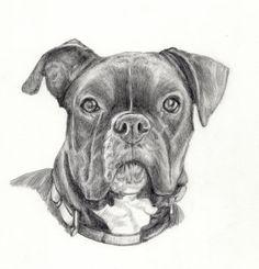 Custom Portrait dog  Dog drawing Personalized by PatouPetPortraits