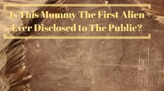 Is this Alien Mummy Discovered in Nazca, Peru the First Ever Disclosed to the Public?... http://www.believe.love/1586/is-this-alien-mummy-discovered-in-nazca-peru-the-first-ever-disclosed-to-the-public/