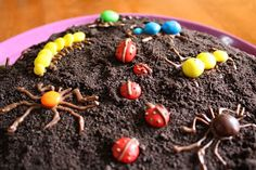Monkey Cakes: Bug Birthday Cakes
