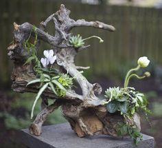 Branch flower arrangement