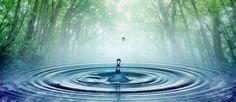 Water! Spring, distilled, ionized?