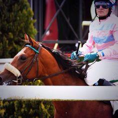 #horseracing