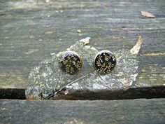 Real flower earrings  Tiny Poison Hemlock by SnippetsOfNature