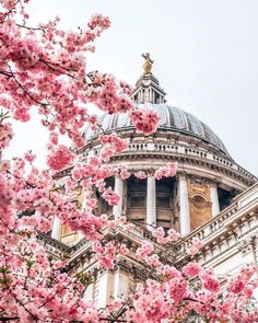 London in bloom 🌸 making our icons extra pretty ✨📷 Amsterdam Canals, Road Trip, London Photography, Nature Photography, Beautiful Architecture, Baroque Architecture, London City, London Skyline, London Travel