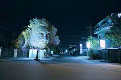 cambodian trees3