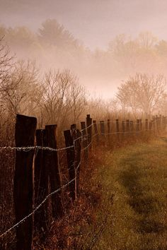 just after dawn at cades cove in the great smoky mountains national park . fence line with hazy morning dew Foto Nature, All Nature, Beautiful World, Beautiful Places, Beautiful Pictures, Country Fences, Country Roads, Rustic Fence, Country Farmhouse