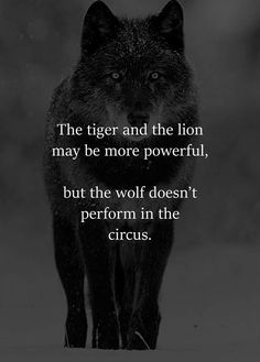 I've always said this! #lonewolf #myspiritanimal
