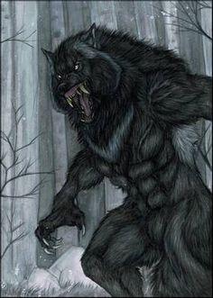 Lunar Cycle's Peak by Saoirsa on DeviantArt Werewolf Vs Vampire, Werewolf Art, Werewolf Games, Arte Horror, Horror Art, Fantasy Creatures, Mythical Creatures, Beast Creature, Fantasy Wolf