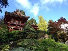 A touch of fall at the Japanese Tea Garden #SF #California #GoldenGatePark