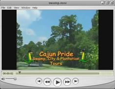 Cajun Pride Swamp & City/Cemetery Tour Combo... Gotta do the touristy thing for one day, right? :P $83 online booking.