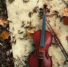 I have been playing the violin for eight years now. It is the love of my life. At my high school, I was concert master of our orchestra for two years and I was involved in a partnership with the University of Missouri-Kansas City, where I received private lessons from an instructor at UMKC and attended various events and played at multiple recitals and orchestras. However, I am not playing here at UCM this year.