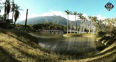 Te presentamos la selección del día: <<NATURALEZA>> en Caracas Entre Calles. ============================  F E L I C I D A D E S  >> @sarahbv29 << Visita su galeria ============================ SELECCIÓN @marianaj19 TAG #CCS_EntreCalles ================ Team: @ginamoca @huguito @luisrhostos @mahenriquezm @teresitacc @marianaj19 @floriannabd ================ #naturaleza #nature #Caracas #Venezuela #Increibleccs #Instavenezuela #Gf_Venezuela #GaleriaVzla #Ig_GranCaracas #Ig_Venezuela…