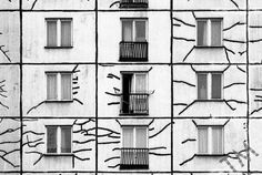 The Neighbor's Building |  Bratislava  This was the building next to mine in Bratislava. One day while taking the dog for a walk I stopped and was struck by all the tar filled cracks in the facade.  Nice strong image. More images shown on my portfolio address listed in bio. #photography #photographer #documentaryphotography #blackandwhite #bnw #fomapan #bratislava #slovakia #architecture #city #cityscapes  #brutalism #dailylife  #concrete  #age  #wear #portfolio  #graphic  #building by…
