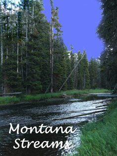 Montana Streams-been there! Beautiful!