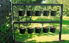 Strawberry plants and salad can be grown in buckets and hung where slugs cannot get to them. Must be watered frequently. Buckets can be put in a greenhouse during winter.