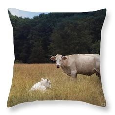 "Ghost Cow And Calf Throw Pillow 14"" x 14"""