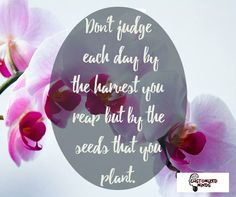 """Don't judge each day by the harvest you reap but by the seeds that you plant."" #Think #CustomizedMinds"