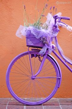so want an all purple bike!