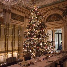 #arbredenoel #christmastree #peninsula #peninsulaparis #déco #élégance #palace #paris #oiseaublanc #bar #rooftop #lavieestbelle