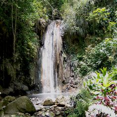Book our indulgent 'Sulphur Seduction', a romantic therapy for two. Bathe in the black waters of St Lucia's sulphur springs, straight from the heart of the volcano then cleanse your body in the breathtaking Piton waterfalls #caribbean #realestate http://www.sugarbeachresidences.com/viceroy-luxury-resorts/rainforest-spa/