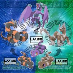 This could be a pretty interesting combo! Base pokes are Fire, Poison, Ground; the evolutions all add dragon type or something! Pokemon Vs Digimon, Rayquaza Pokemon, Pokemon Fake, Pokemon Fusion Art, Pokemon Alola, Pokemon Comics, Pokemon Fan Art, Charizard, Pokemon Images