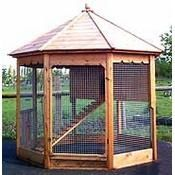if i ever had chickens this is where i would put them.