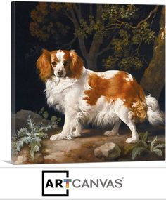 Picture of UNITED KINGDOM - CIRCA a stamp printed in Great Britain shows King Charles Spaniel, painting by George Stubbs, circa 1991 stock photo, images and stock photography. Cavalier King Charles, King Charles Spaniel, Stretched Canvas Prints, Canvas Art Prints, Uk Stamps, Stamp Printing, All Nature, Vintage Stamps, Stamp Collecting