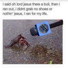 I want crawfish | Memes*R*Funny | Pinterest | Funny things ...