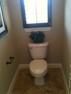 Toilet Room in Master Bath--love window behind it to bring in light.
