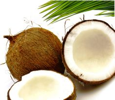 Synchro :: 4 Reasons You Need More Coconut Oil In Your Life