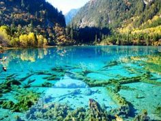 Turquoise Lake, Jiuzhaigou National Park, China – Beautiful turquoise mirror lake reflecting the mountains and trees.