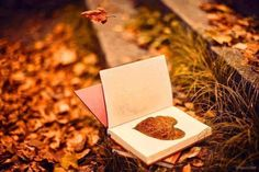 ~ An Autumn Romance ~ Autumn Garden, Autumn Tea, Autumn Nature, Seasons Of The Year, Fall Pumpkins, Autumn Inspiration, Fall Baking, October Wedding, Children's Picture Books