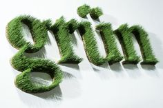 Individually made lettering, words and numbers from dried and preserved real grass - from 15 cm up to meter-large single letters everything is possible. The grass is carefree and keeps shape and color long-term. Hotel Signage, Wayfinding Signage, Signage Design, Environmental Graphic Design, Environmental Graphics, Fleur Design, Wall Logo, Green School, Playground Design