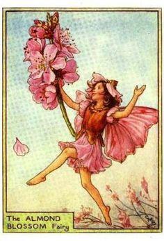 Tree Fairies:  The Almond Blossom Fairy by Cicely Mary Barker