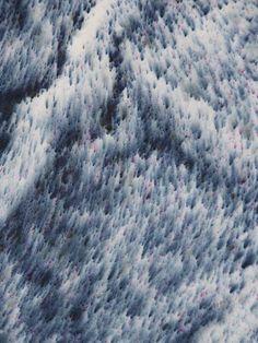 DRAWN BY NATURE - Anna Badur